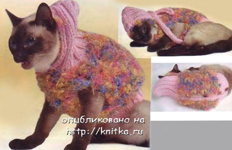 Курточка с капюшоном для кошки