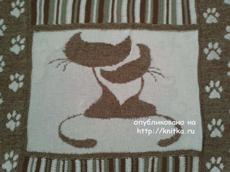 Пледы с котами схемы