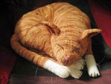 спящий рыжий кот спицами