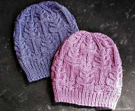 Описание шапочки СТЕБЕЛЬКИ связанной спицами 3