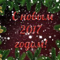 С наступающим 2017 годом!