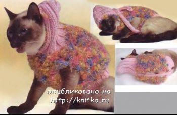 Курточка с капюшоном для кошки. Вязание спицами.