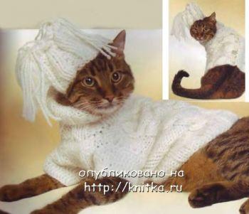 Белый комплект для кошки. Вязание спицами.